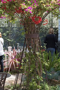 Arbor with bouganvillea inside rebar support