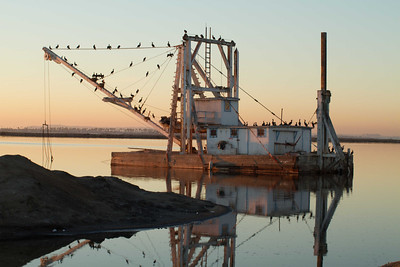 20130131-IMG_2876  Salt Works dredge doubles as a Cormorant resting area and in season, a nesting area for them as well.  The numbers of Cormorant's on the dredge increased as the sun went down. Southern Coronado is the stretch of land behind it with a faint outline through the haze of the tip of Point Loma in the distance.